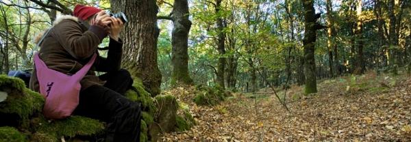 fraga de catasós castaños excursión otoñoo